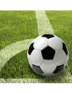 Servilletas papel decorada futbol fotográfica 33 x 33 cm