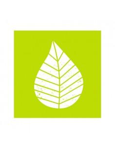 Servilletas de papel decoradas color verde lima 25 x 25 cm Graphic Leaves
