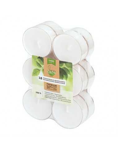Velas lamparilla maxi ecológicas blancas base transparente Ø 59 x 24 mm