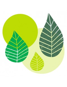 Servilletas de papel decoradas hojas verde lima 40 x 40 cm Graphic Leaves