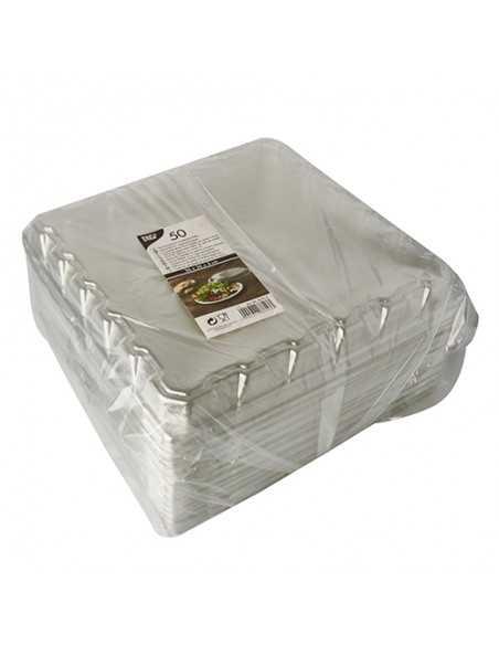 Tapas para platos cuadrados plástico transparente 26 x 26 cm